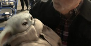 George Lucas Baby Yoda Photo