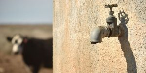 Michigan, Australia Let Companies Pump Water Amid Shortages for Residents