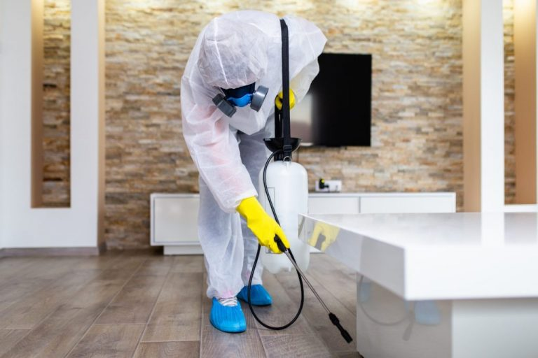 What is disinfection for homes and workplaces?
